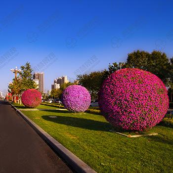 绿化花球造型